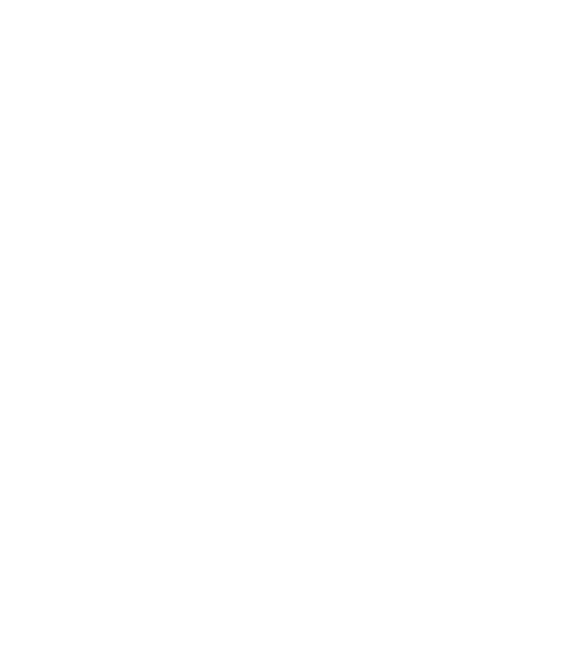 Brandon Wicks Real Estate